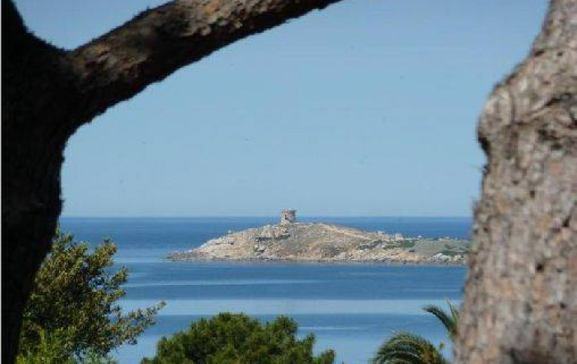 Location de vacances - Villa à Cargèse - la presqu'ile d'omigna er sa tour