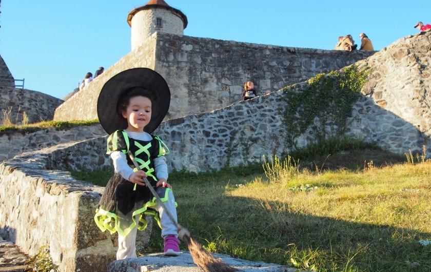 Location de vacances - Chalet à Saint-Gérons - Château de Laroquebrou   à 4 kms jour Halloween