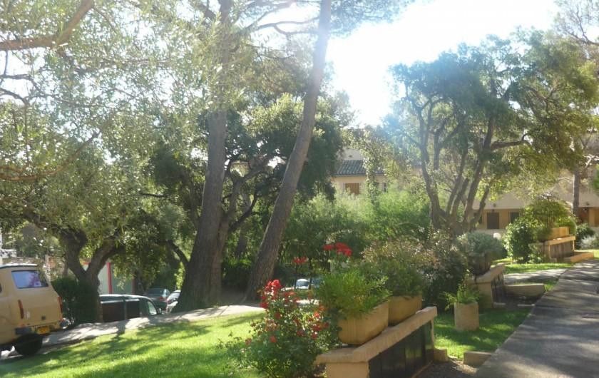 Location de vacances - Studio à Saint-Raphaël - La résidence le Hameau des pins