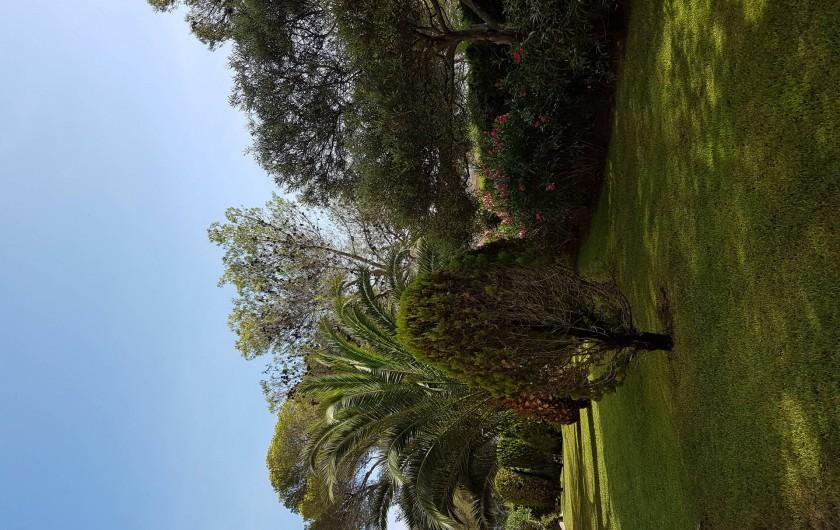 Location de vacances - Studio à Saint-Raphaël - Résidence vue du salon de jardin