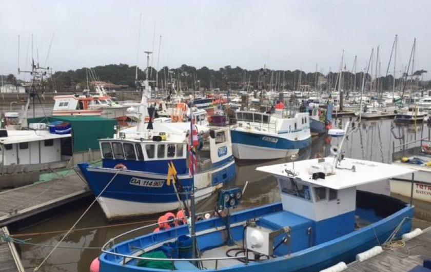 Location de vacances - Appartement à Soorts-Hossegor - le port de pêche