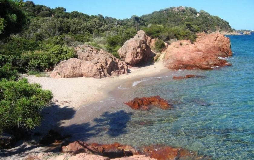 Location de vacances - Villa à Lecci - Crique à quelques pas de la maison