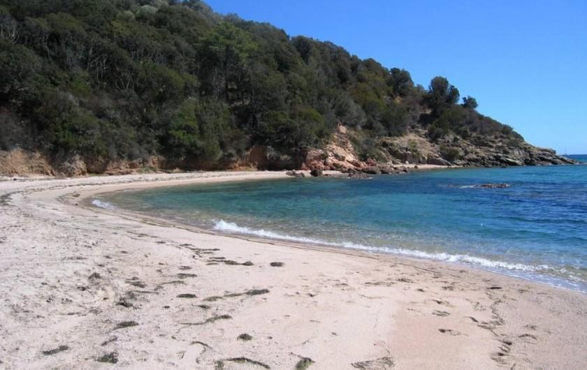 Location de vacances - Villa à Lecci - Plage quasi déserte à quelques mètres de la maison