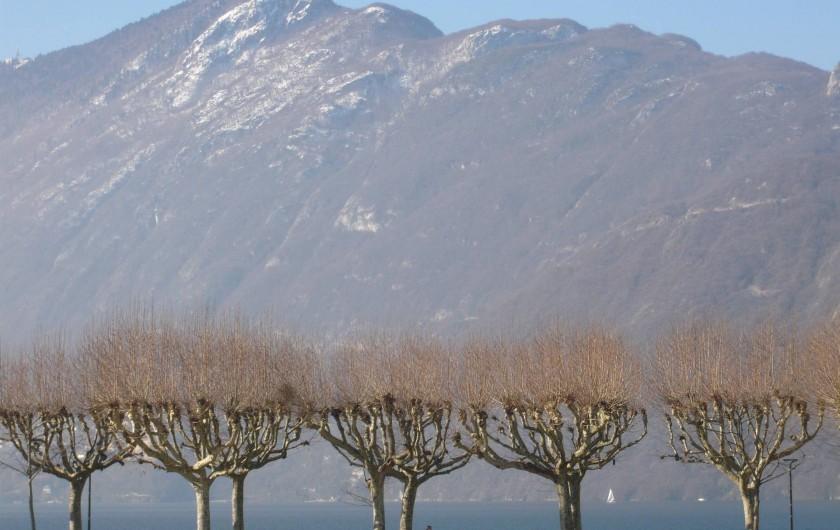 Location de vacances - Maison - Villa à Cusy - Promenade au bord du lac du Bourget