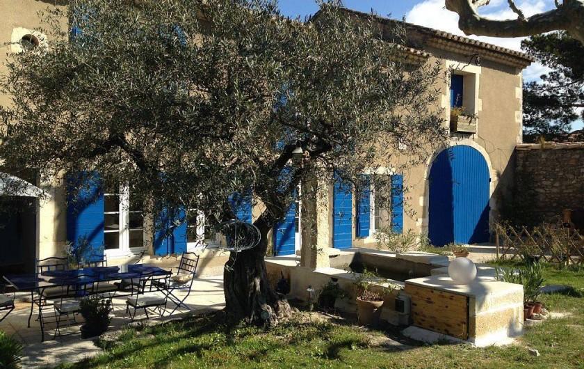 Location de vacances - Mas à Saint-Rémy-de-Provence - Jardin