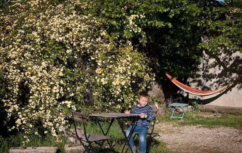 Location de vacances - Gîte à Mollans-sur-Ouvèze - Au printemps on profite des rosiers
