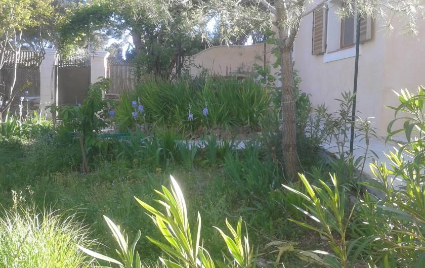 Location de vacances - Villa à La Seyne-sur-Mer - Jardin + entrée portillon au fond à gauche