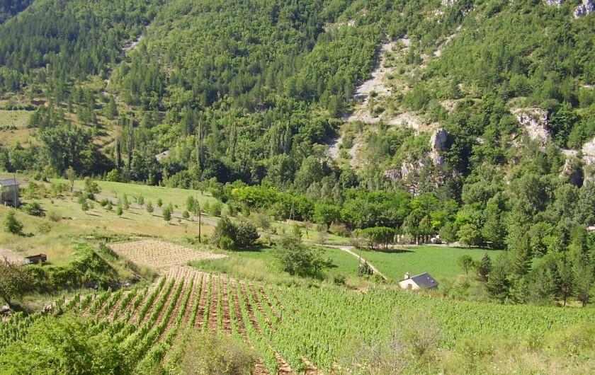 Location de vacances - Camping à Castelbouc