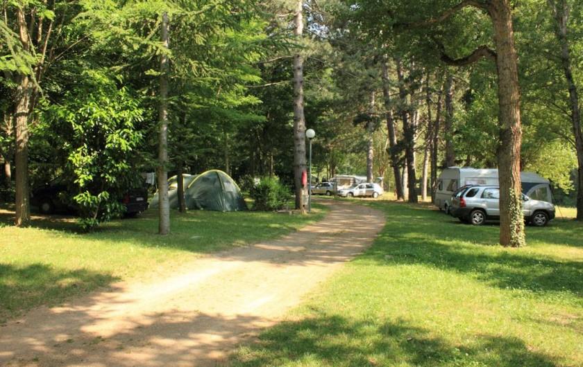 Location de vacances - Camping à Castelbouc - Une des allées du camping