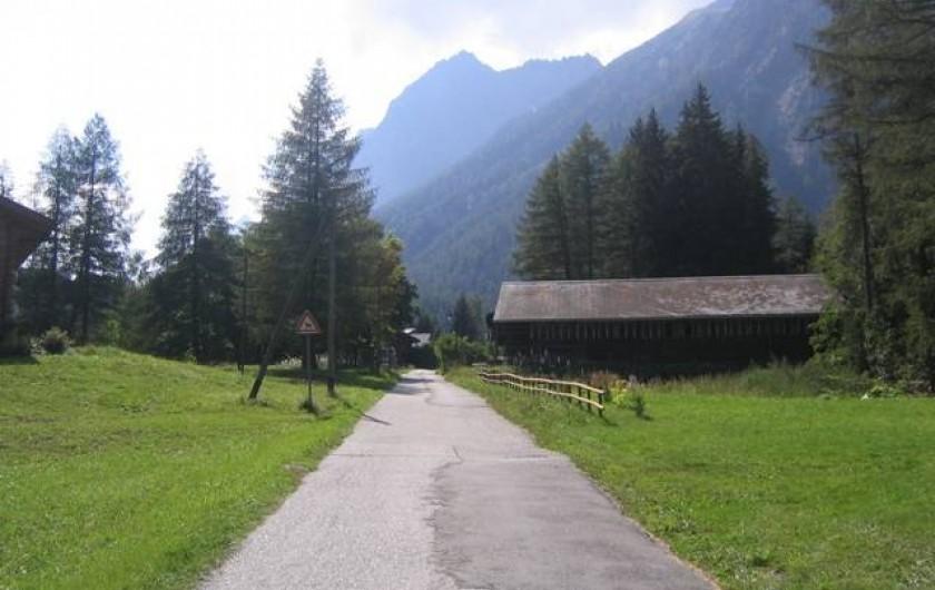 Location de vacances - Chalet à Praz-de-Fort - Route près du chalet