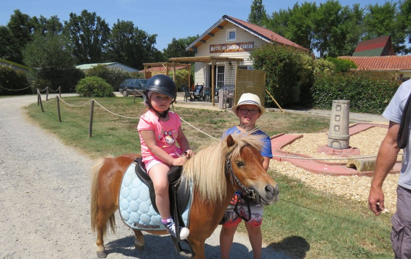 Location de vacances - Camping à Sallertaine - Balade en poney