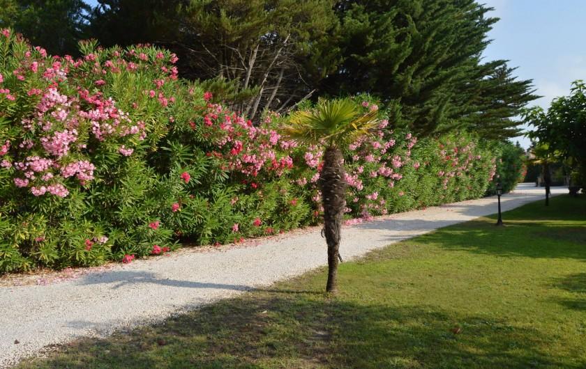 Location de vacances - Chambre d'hôtes à Aigues-Mortes - entrée