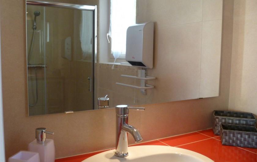 Location de vacances - Gîte à L'Isle-sur-la-Sorgue - plan de vasque et reflet de cabine de douche dans son miroir