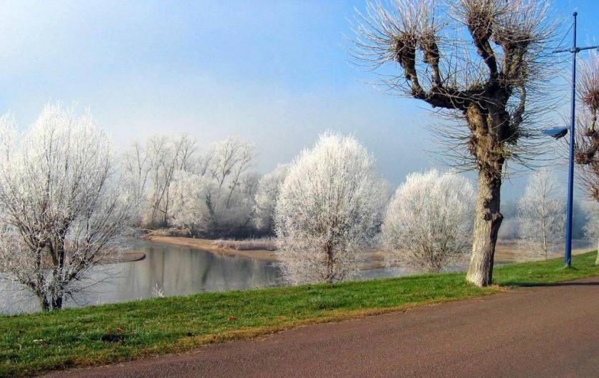 Location de vacances - Appartement à Pouilly-sur-Loire - La loire en hiver