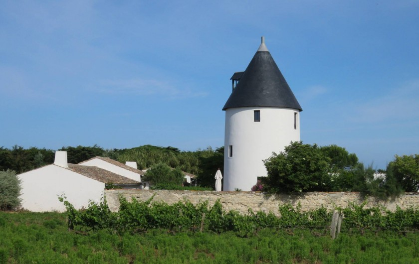 Location de vacances - Villa à Ars-en-Ré - Ancien moulin à vent  ARS EN RE