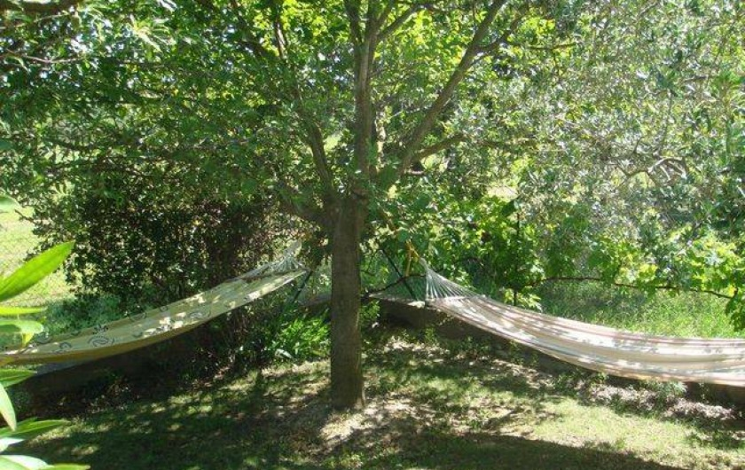 Location de vacances - Appartement à Grignan - hamacs à l'ombre de l'amandier