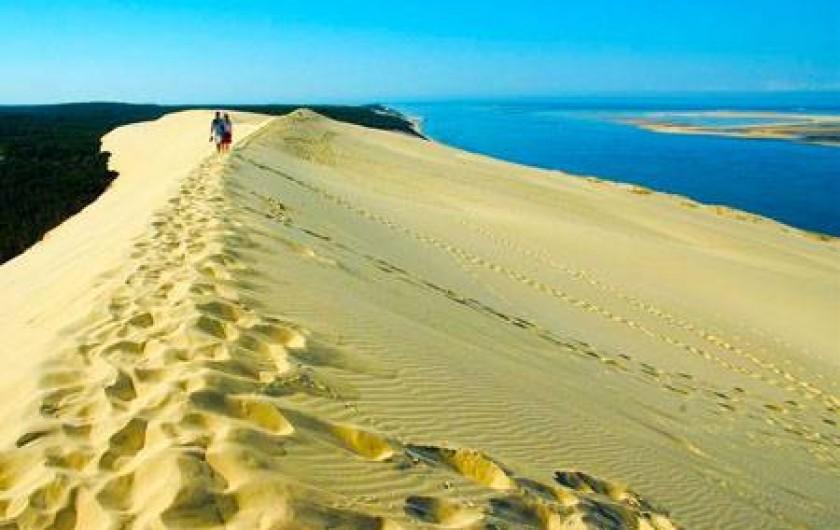 Location de vacances - Camping à Sainte-Eulalie-en-Born - dune du Pilat