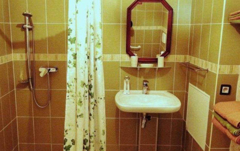 Location de vacances - Chambre d'hôtes à Andilly - La salle de bains de la chambre La Venise verte