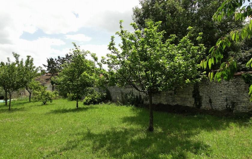 Location de vacances - Chambre d'hôtes à Andilly - Les arbres fruitiers sous le soleil