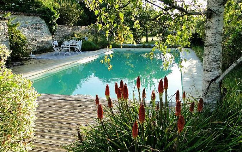 Location de vacances - Chambre d'hôtes à Andilly - la piscine au sein du jardin paysager : un havre de paix,