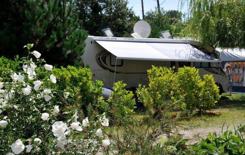 Location de vacances - Bungalow - Mobilhome à Biscarrosse - Emplacement nu pour camping-car, caravane ou toile de tente proche sanitaires.