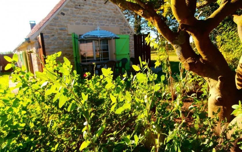 Location de vacances - Gîte à Beuvrequen - Vu de l'espace arboré et fleuri avec la terrasse en 2° plan