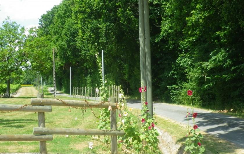 Location de vacances - Gîte à Vanzac - Arrivée depuis les bois