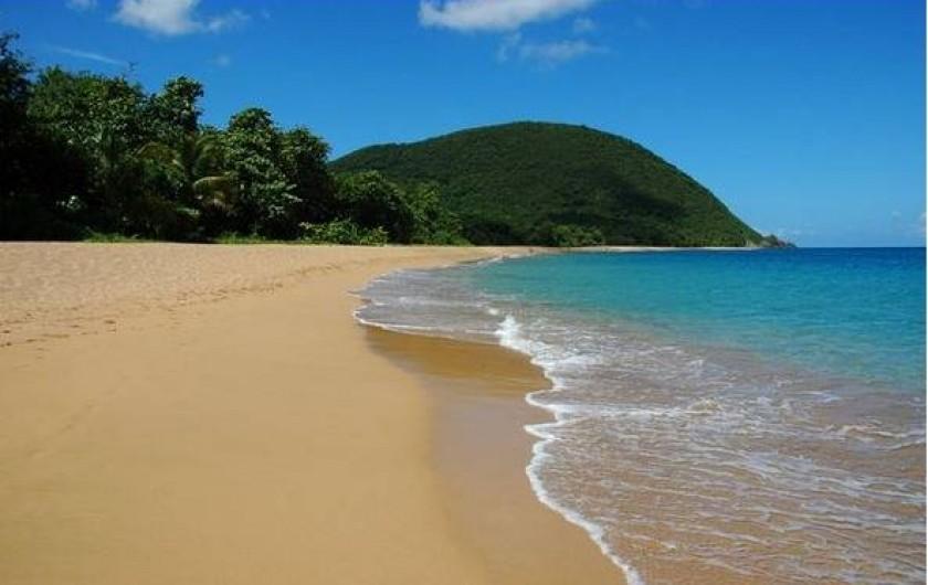 Location de vacances - Villa à Deshaies - Plage de Grande Anse