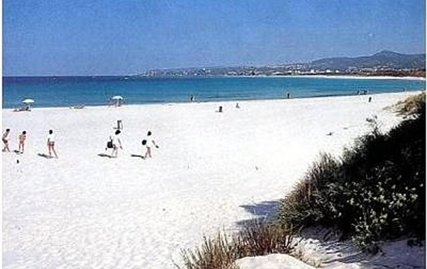 """Location de vacances - Appartement à Guardistallo - """"Plage Blanche"""" à Vada, au Nord de Cecina"""