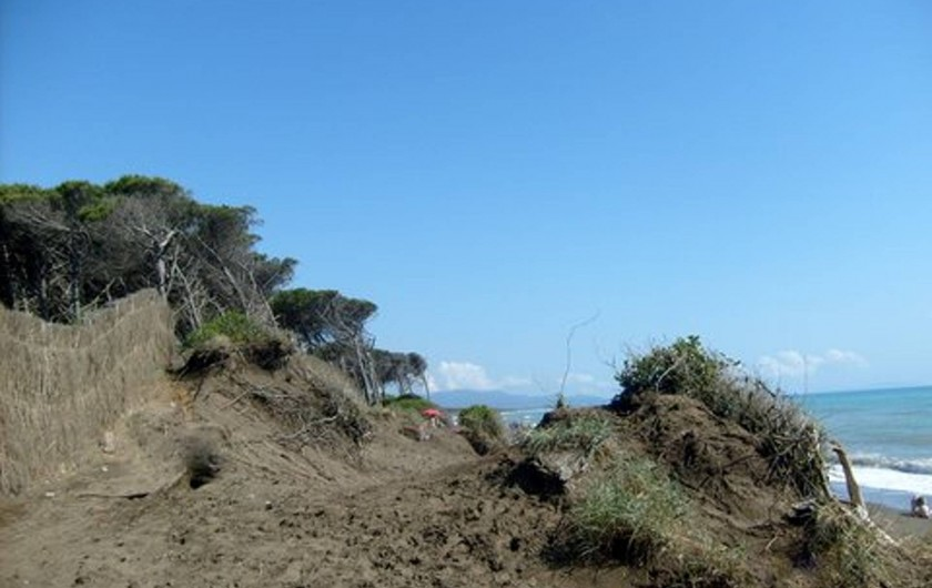 Location de vacances - Appartement à Guardistallo - Dunes au sud de Cecina marina, entre la Pinède et la plage