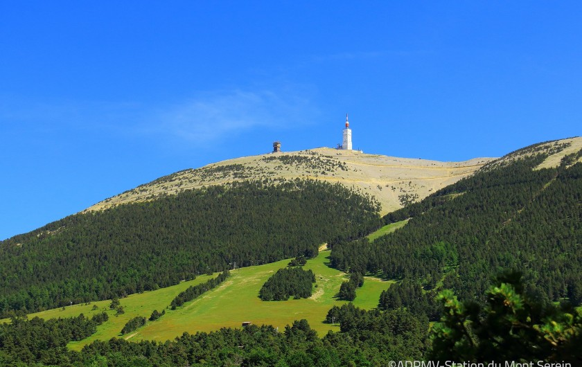 Location de vacances - Mas à Chantemerle-lès-Grignan - le Mont Ventoux
