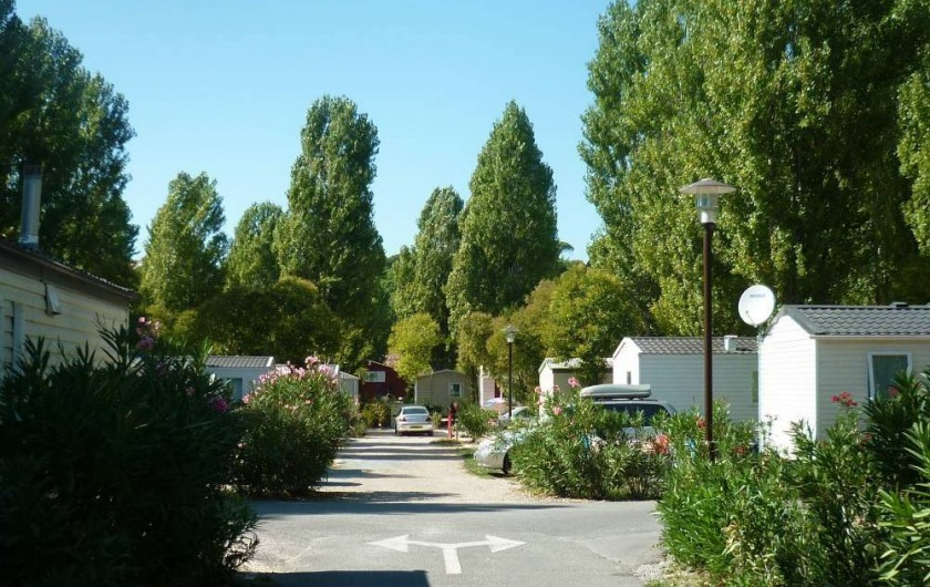 Location de vacances - Bungalow - Mobilhome à Fréjus - ALLEE DU CAMPING