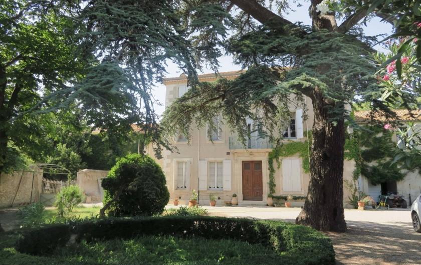 Location de vacances - Chambre d'hôtes à Ouveillan - La maison et son cèdre centenaire
