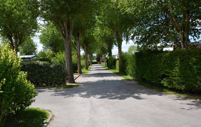 Location de vacances - Bungalow - Mobilhome à Berck - Allée