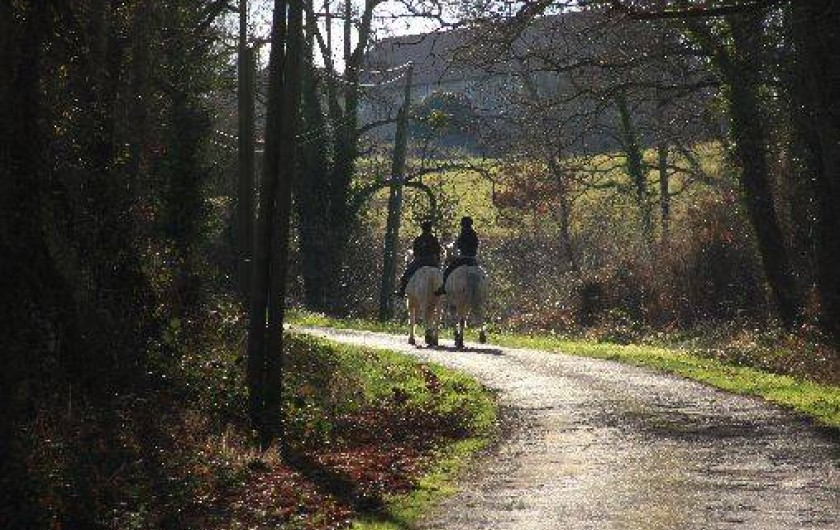 Location de vacances - Gîte à Lormes - Une promenade au calme