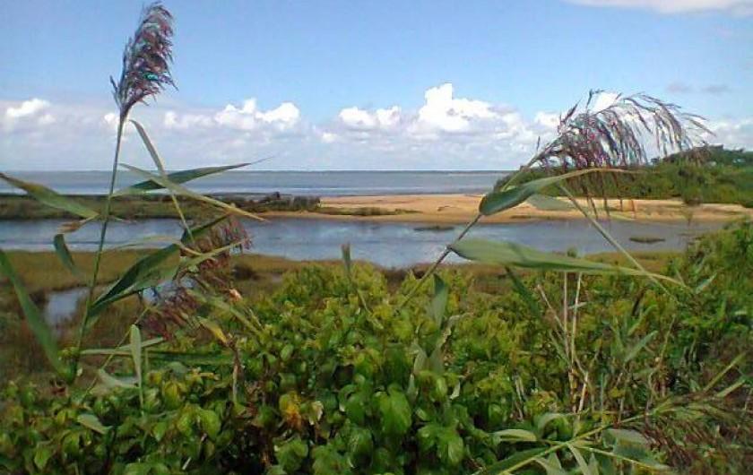 Location de vacances - Villa à Gujan-Mestras - une des multiples petites plages du fond du Bassin