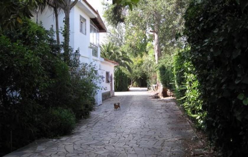 Location de vacances - Appartement à Estoril