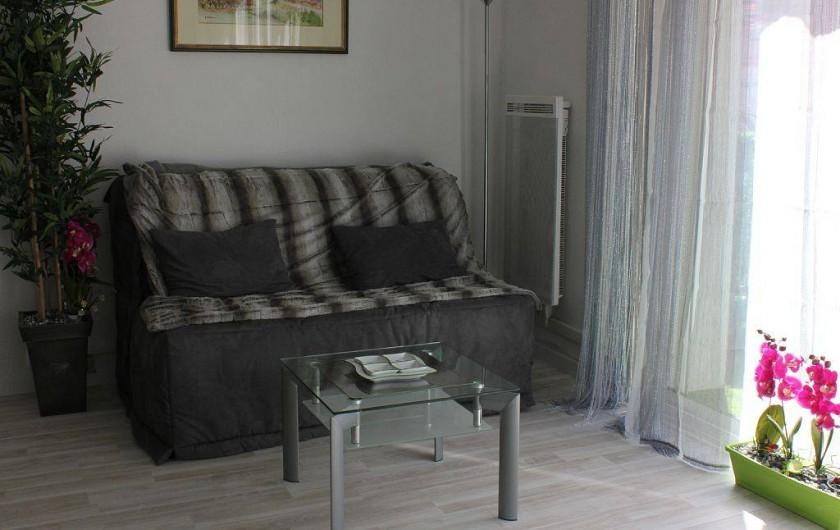 Location de vacances - Studio à L'Isle-sur-la-Sorgue - Le coin salon