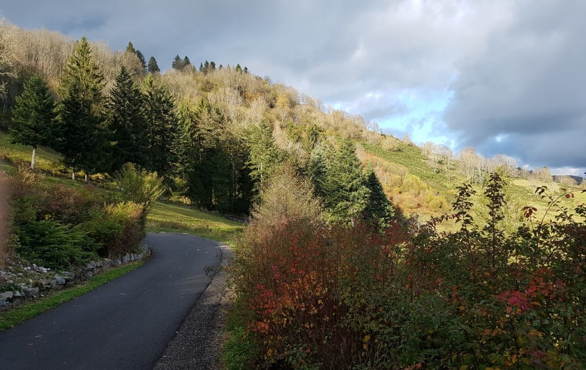Location de vacances - Villa à La Bresse - La croix des moinats