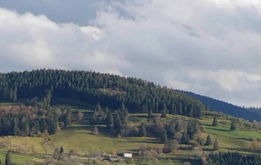 Location de vacances - Villa à La Bresse - La Bresse