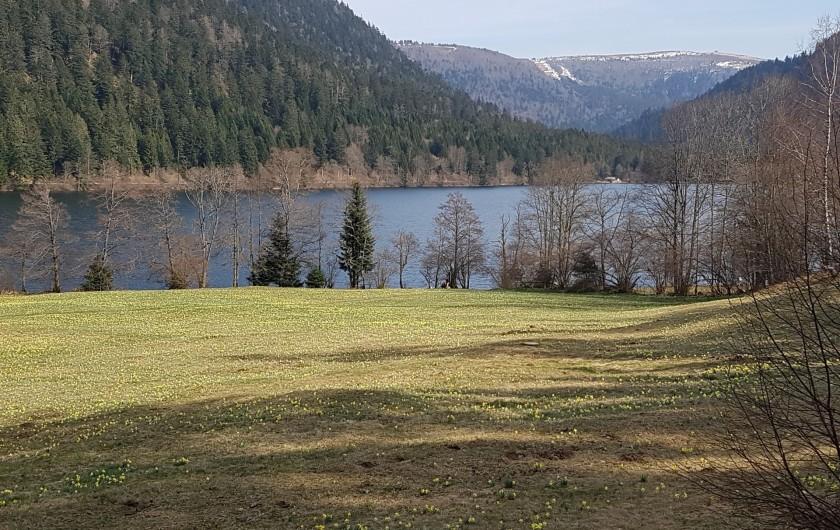 Location de vacances - Villa à La Bresse - Xonrupt-Longemer