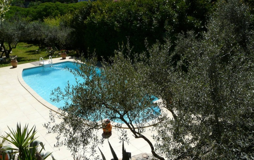 Location de vacances - Gîte à Nîmes - Grande piscine pour satisfaire vos envies de rafraîchissement