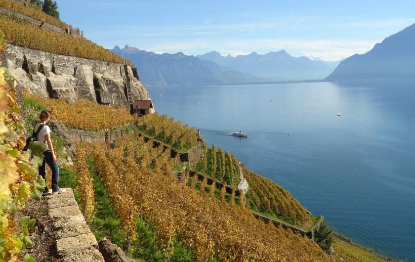 Location de vacances - Bungalow - Mobilhome à Thonon-les-Bains - Randonnée au bord du lac