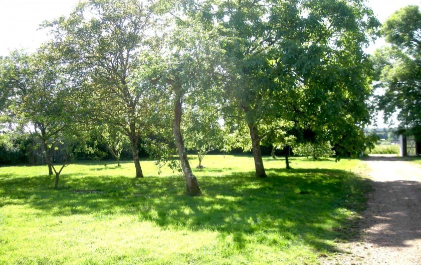 Location de vacances - Château - Manoir à Boissy-lès-Perche - Jardin