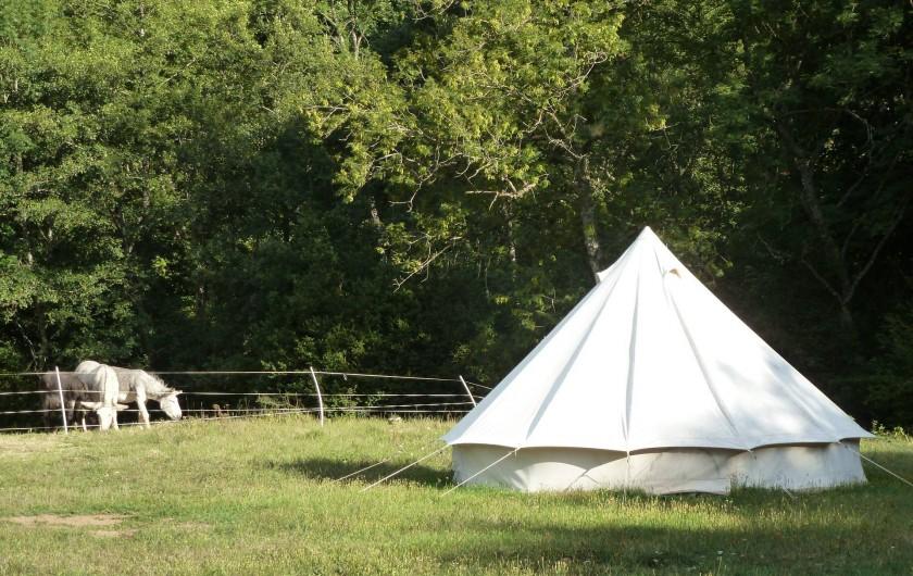 Location de vacances - Camping à Meyrueis - une tente ,avec les ânes au fond ,curieux ,qui viennent voir