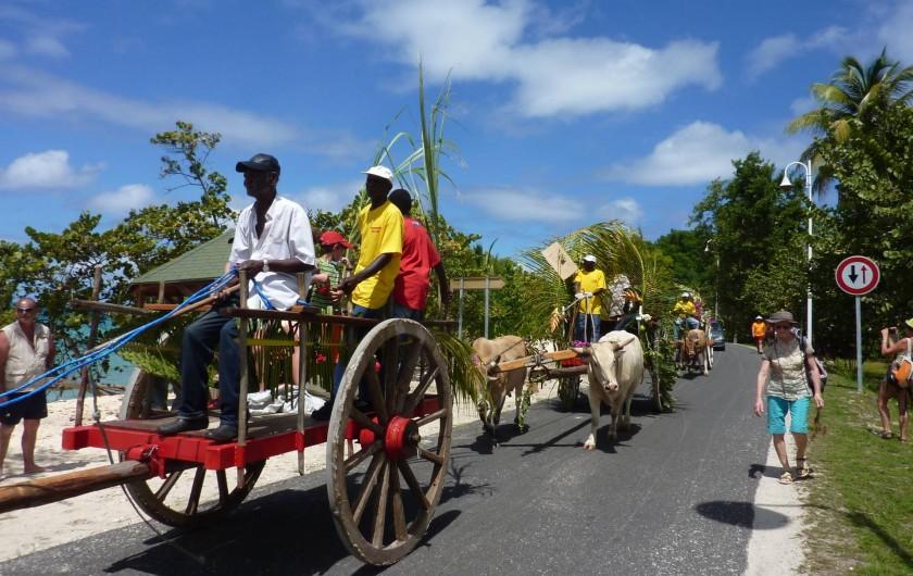 Location de vacances - Villa à Grand-Bourg - un défilé de chars à boeufs