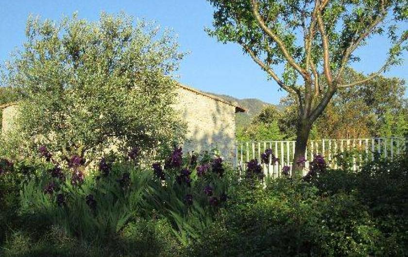 Location de vacances - Villa à Roche-Saint-Secret-Béconne - Le cabanon de la piscine.