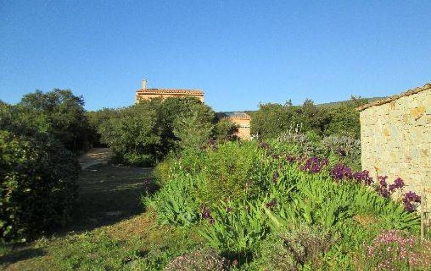 Location de vacances - Villa à Roche-Saint-Secret-Béconne - Le chemin et perdue dans le bois, au calme, la maison.
