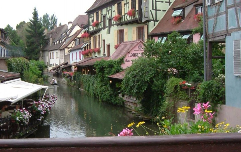 Location de vacances - Appartement à Orbey - Kaysersberg au printemps