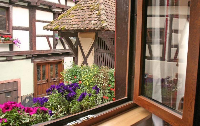 Location de vacances - Gîte à Eguisheim - Douceur, calme, fleurs, sérénité...